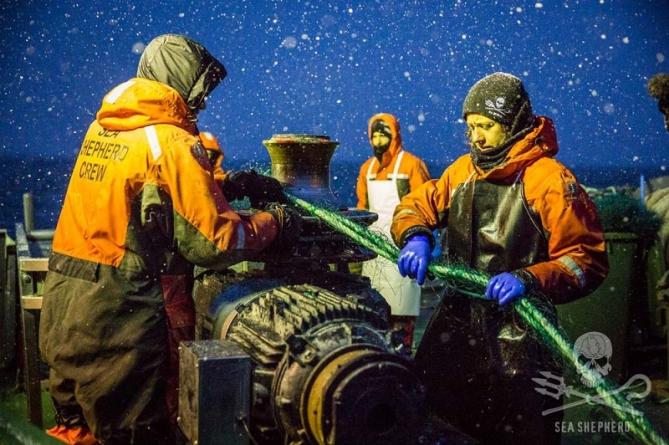 Japão proíbe entrada no país de 11 ecologistas da Sea Shepherd