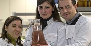 Escola Superior de Tecnologia do Mar de Peniche – produções em aquacultura potenciam negócios