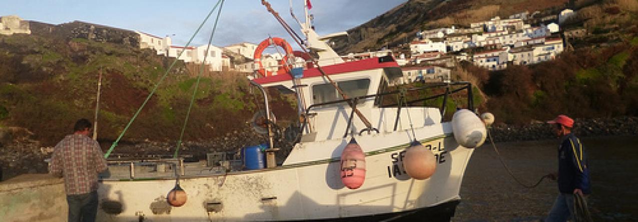 Governo aciona Fundopesca nas ilhas Flores e Corvo