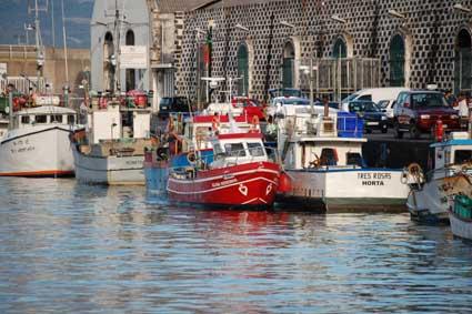 PSD e BE pedem revisão das regras do Fundopesca nos Açores