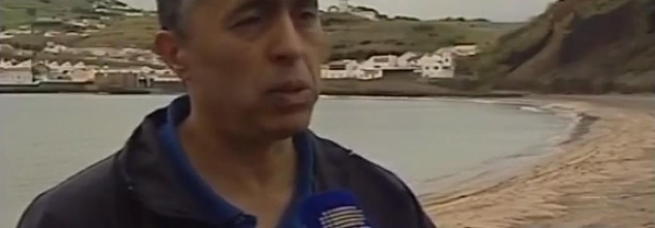 Águas vivas invadem praias dos Açores no inverno (vídeo)
