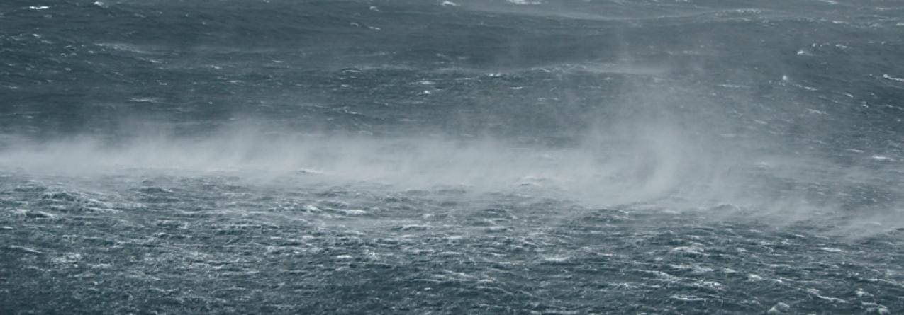 Parque Natural do Faial promove Concurso Fotográfico ''Mar bravo''