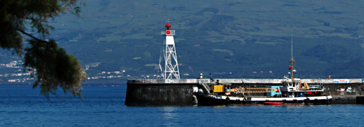 Trabalhadores dos portos dos Açores anunciam greve de 09 a 15 de fevereiro