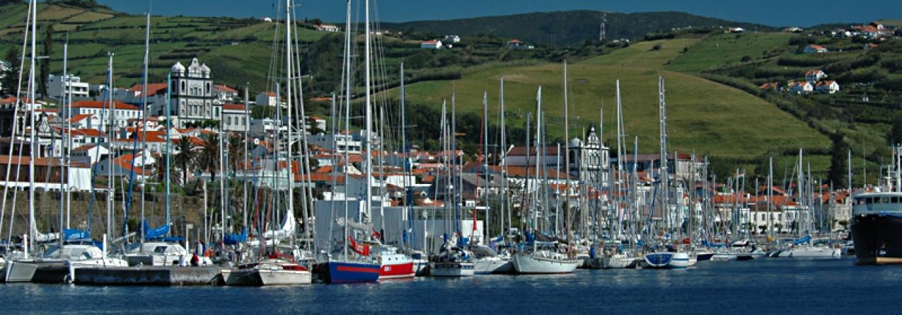Marina da Horta entre os nomeados do Publituris Portugal Trade Awards'15