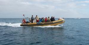 Operadores de mergulho dos Açores discordam do plano de revitalização para a Terceira e ameaçam com greves
