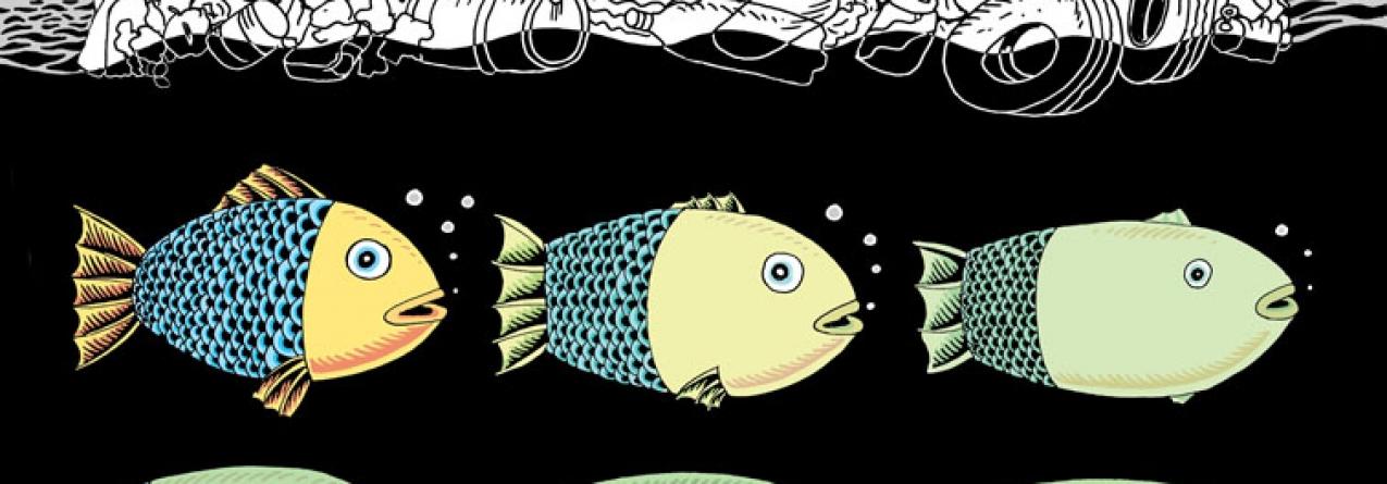 CARTOON: Evolução dos Mares