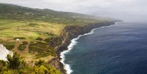 Direção Regional dos Assuntos do Mar remove cadáver de cachalote da costa de Castelo Branco, no Faial
