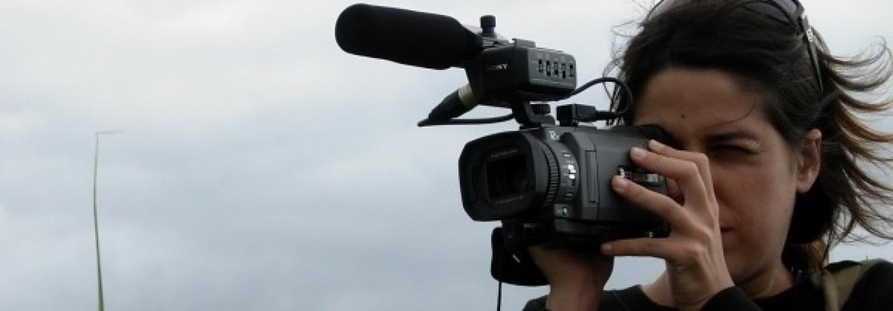 Cine'Eco Seia – Festival Internacional de Cinema Ambiental da Serra da Estrela no Faial