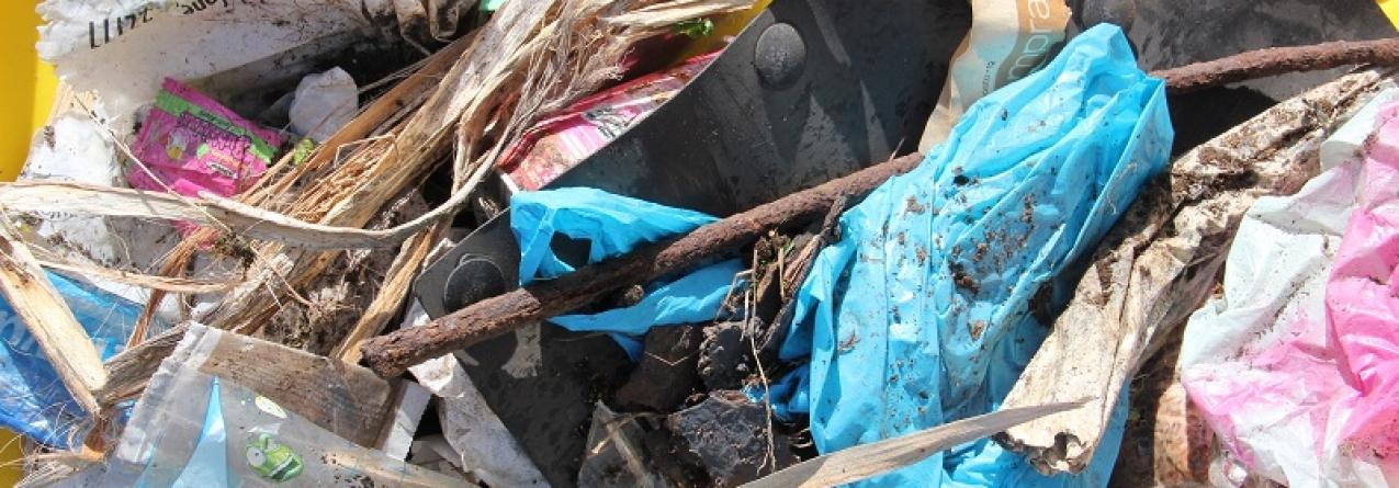 Campanha internacional recolhe lixo aquático em sete ilhas dos Açores