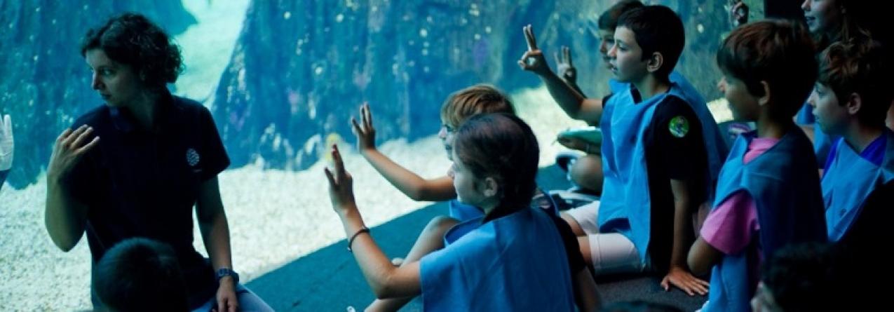 """No Oceanário as Férias de Páscoa são """"Debaixo de Água"""""""