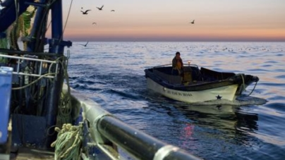 Peixe português só dá para 4 meses