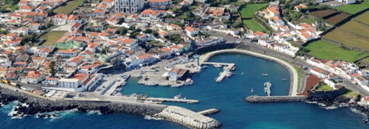 Apreendidos 800 quilogramas de chicharros na ilha Terceira