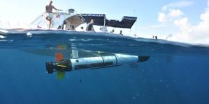 Açores têm condições únicas para o desenvolvimento de novas tecnologias marítimas, afirma Filipe Porteiro