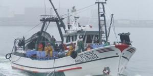 Sardinha escasseia e é barata no regresso à pesca após paragem de seis meses em Peniche