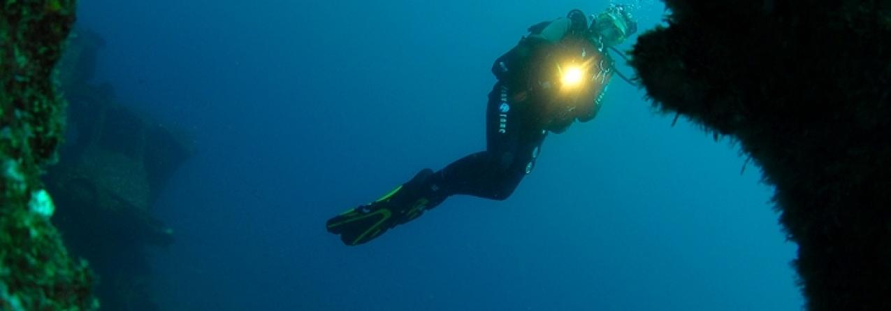 """PS quer """"centro para observação oceânica"""" nos Açores para aproveitar potencial do mar"""