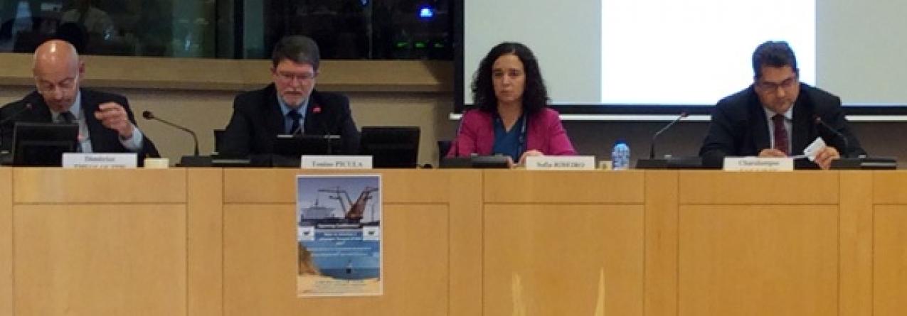 Sofia Ribeiro defende o restabelecimento do POSEI Pescas
