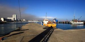 Tribunal defende 'Porto de Abrigo'