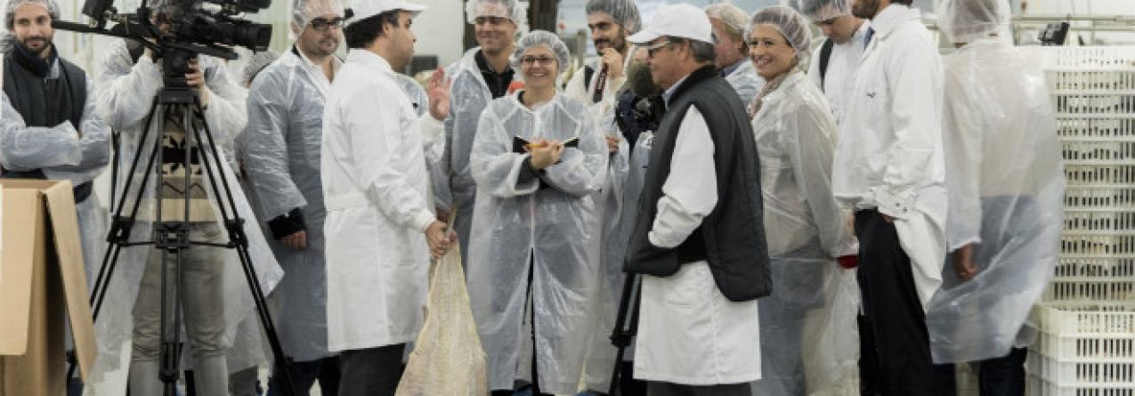 A maior fábrica de bacalhau do mundo é portuguesa. Por ano, são processadas, na Moita, 100 mil toneladas.