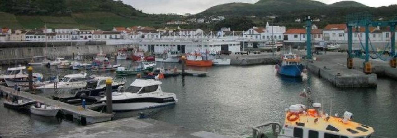 Ilha Graciosa // Pesca descarregada aumentou 150% nos primeiros 4 meses de 2015