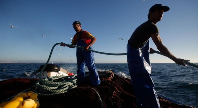 Frota nacional capturou mínimos históricos de peixe em 2014