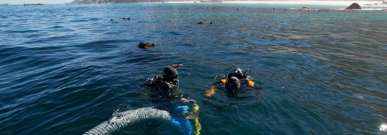 Encontrados restos de navio português do séc. XVIII que transportava escravos