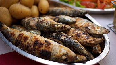 Portugal consome 13 sardinhas por segundo em Junho