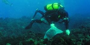DOP // O investigador  João Gonçalves defende estudo para conhecer recursos marinhos dos Açores