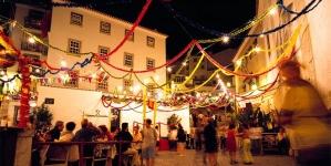 Sardinhas chegam a custar 2,5 euros a unidade durante o Santo António (vídeo)