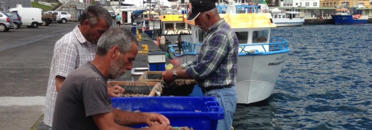 Pescadores têm função central na economia dos Açores, afirma Fausto Brito e Abreu