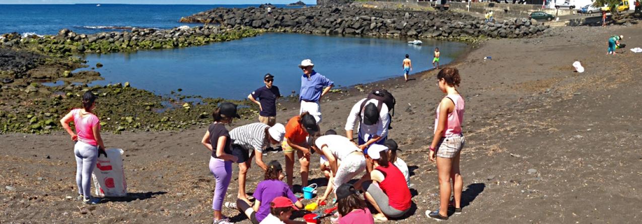 Plano de ação para reduzir lixo marinho nos Açores