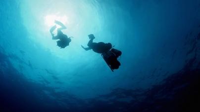 BBC filma no mar profundo dos Açores para série a exibir em 2017