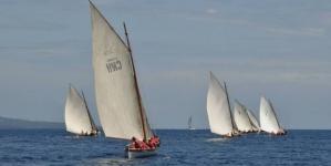 """Botes baleeiros // Regata """"4 de julho"""" vai colorir a baía da Horta"""