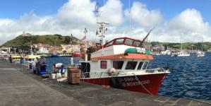 Açores interditam pesca do goraz na segunda quinzena de julho