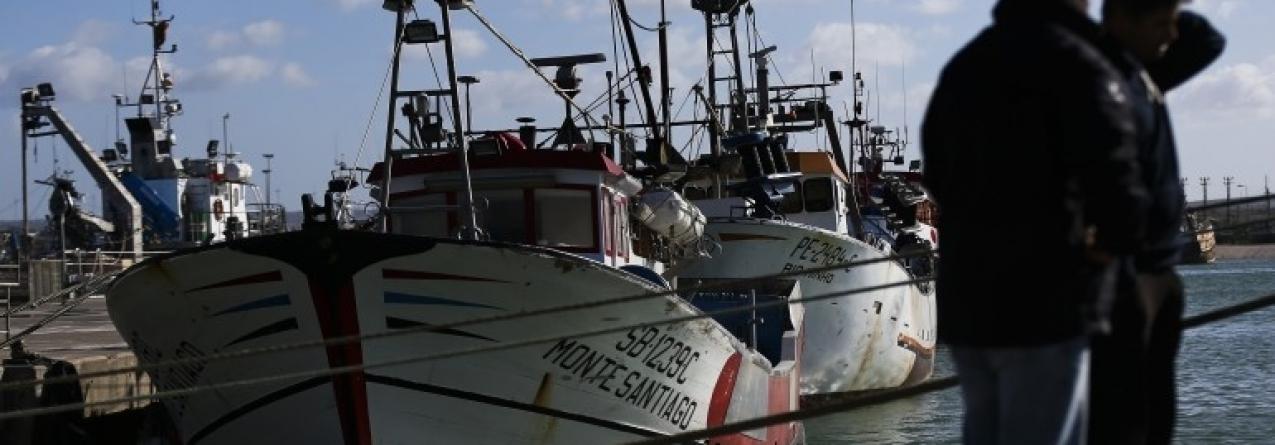 Pesca da sardinha // Se este ano já foi mau, 2016 pode ser 10 vezes pior