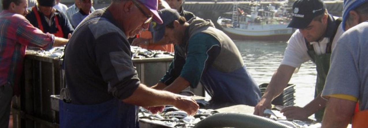 Pescadores precisam-se