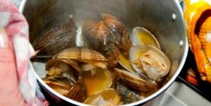 """Amêijoas da ilha de São Jorge são consideradas """"maravilha gastronómica"""""""