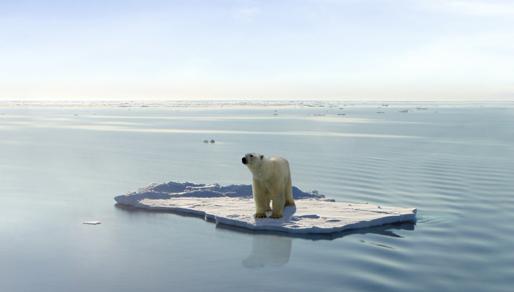 Adaptação às alterações climáticas é uma prioridade para regiões insulares, afirma Brito e Abreu