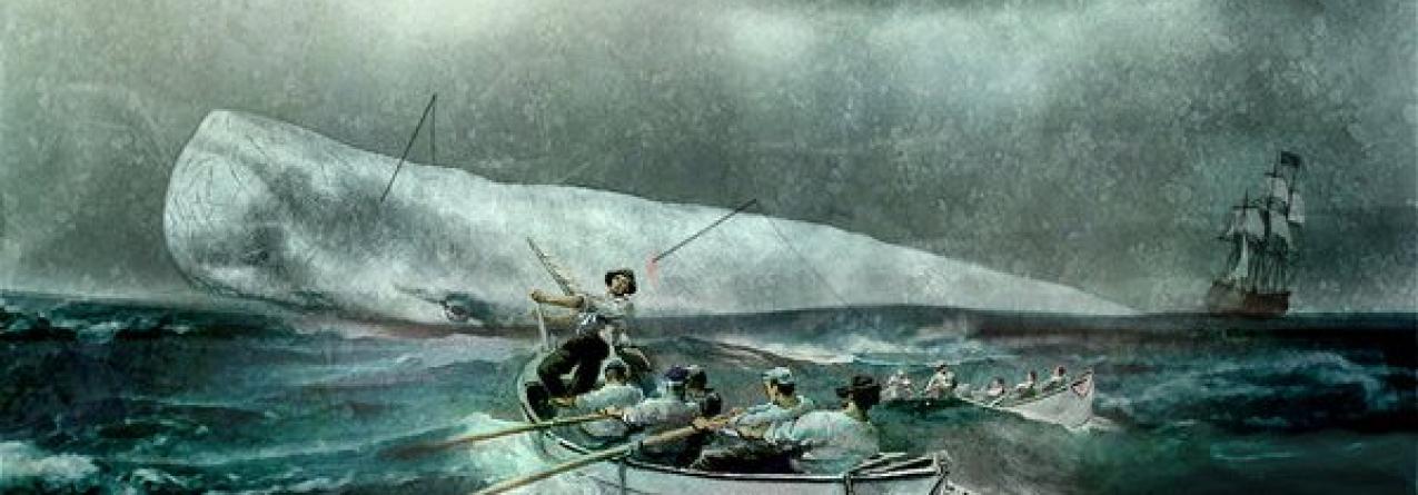 Caçar cachalotes, uma estória na história