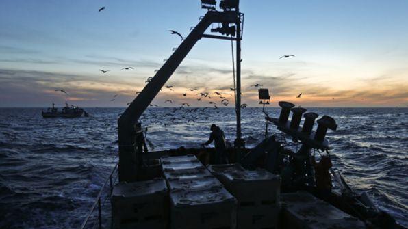 Há muitos navios estrangeiros a pescar no interior das 100 milhas
