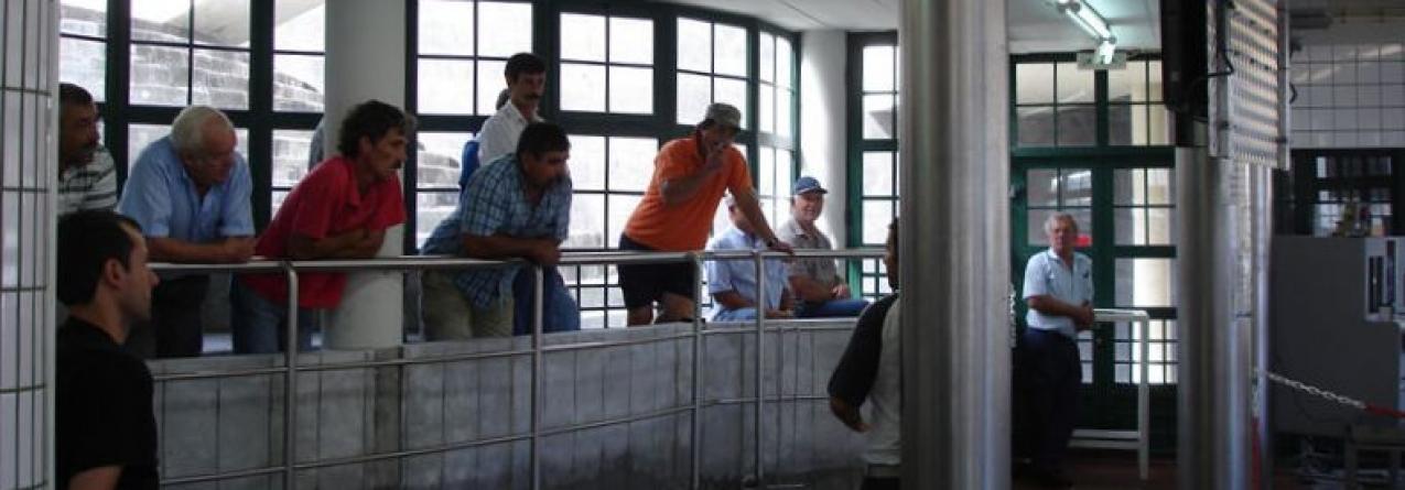 Trabalhadores da Lotaçor preparam greve por tempo indeterminado contra o fim do Fundo de Pensões