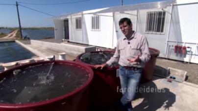 Aquacultura de Macroalgas: Inovação made in Portugal (vídeo)
