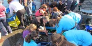 Mais de 700 quilogramas de lixo retirados do mar no Porto da Horta
