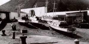 Museu da Graciosa promove exposição sobre a baleação nos anos 50