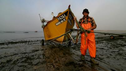Na Gestão de Pescas, os Humanos também são parte do Ecossistema!!!!