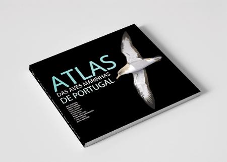 Dia Nacional do Mar // SPEA lançou «Atlas das Aves Marinhas de Portugal»