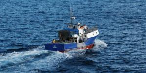 Governo dos Açores decide marcar e colorir gasóleo agrícola e das pescas