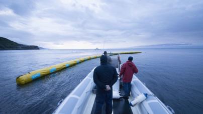 2016: o ano da limpeza dos mares
