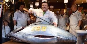 Primeiro atum do ano leiloado por 108.000 euros em Tóquio