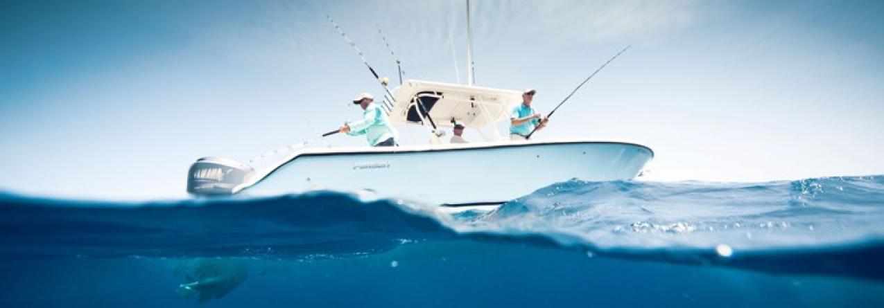 Pescadores e armadores propõem ao Governo dos Açores medidas de controlo da pesca desportiva