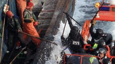 Legislação da UE sobre pesca ilegal necessita de implementação mais forte para alcançar todo o seu potencial, afirmam as ONGs